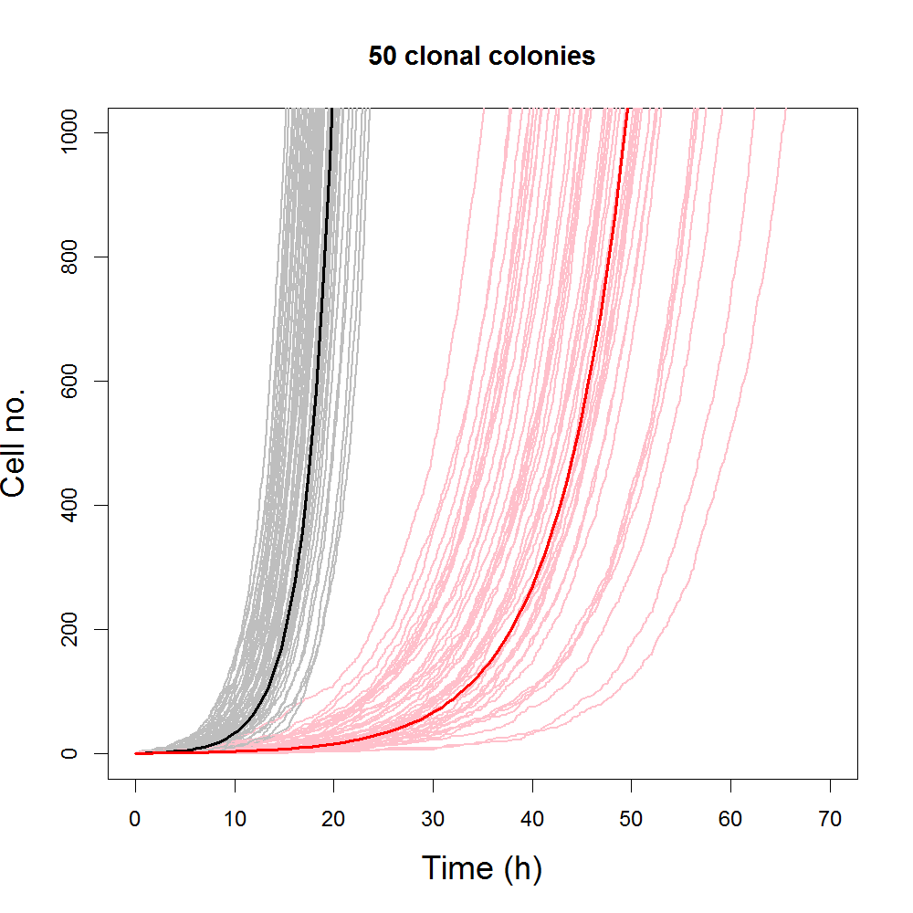 Comparing simulated results from stochastic and deterministic logistic models